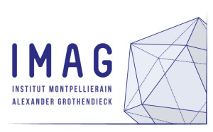 logo IMAG